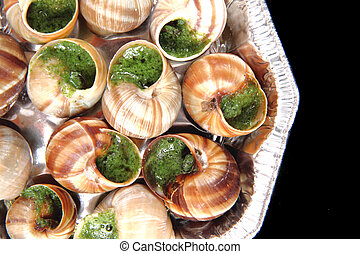snails as french gourmet food on the black background