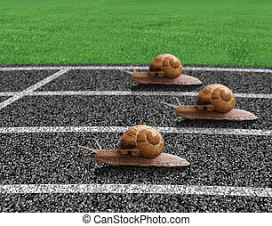 Snails race on sports track near the finish line