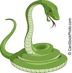 Snake - Green snake on the white background