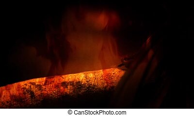 Abstract composite shot of snake slithering along branch in flames