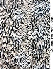 snake texture closeup