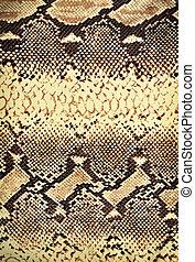 Snake texture.