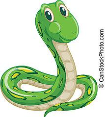 snake - illustration of green snake on a white background