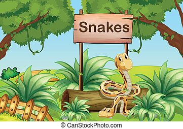 Illustration of the snakes in the hills beside a wooden signboard
