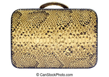 Snakeskin Bag with Clipping Path