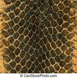 Snakeskin - Snake skin leather texture on a wallet