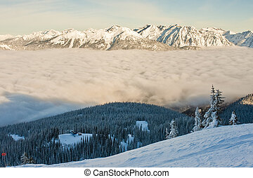 sne bedækkede, og, avalanche, liggende, vinter, terræn