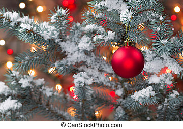 sneeuw bedekte, kerstboom, met, hangend, rood, ornament
