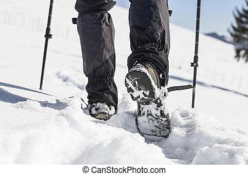 sneeuw, mannelijke , winter, laarzen, trekking