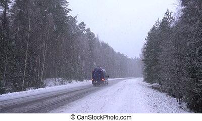 sneeuw, neer komend, in, de, forest.