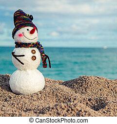 sneeuwpop, het glimlachen, strand, zee