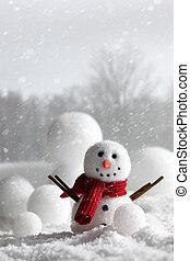 sneeuwpop, met, wintery, achtergrond