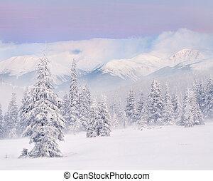 snestorm, ind, den, bjerge., vinter, solopgang