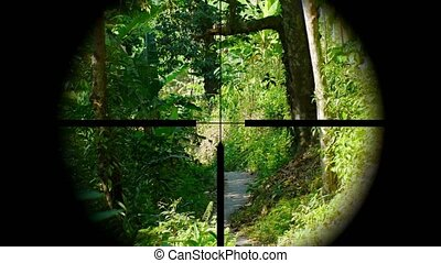 Sniper seeking his prey. A view through a rifle sight. Video UltraHD