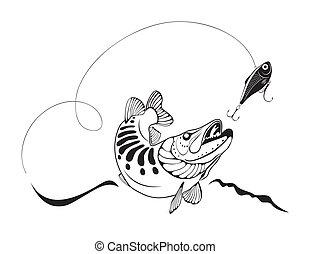snoek, en, visserijlokmiddel, vector, illustratie