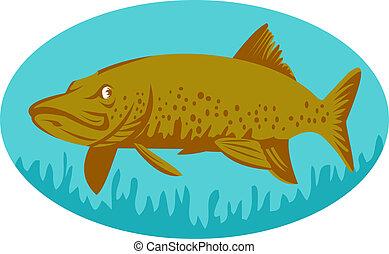 snoek, of, muskie, visje, zwemmen, set, binnen, een, ovaal