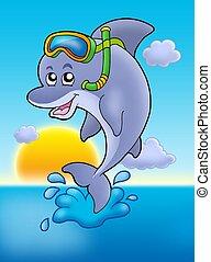snorkel, zachód słońca, delfin, nurek