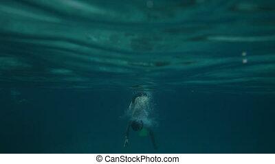 snorkeler, cerveau, long, co, plongée