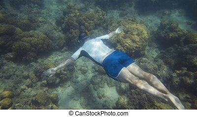 Snorkeler slowly swims to the surface of the ocean