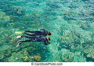 Snorkelers, Great Barrier Reef, Australia