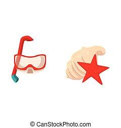snorkeling, buceando, máscara, y, conchas de mar