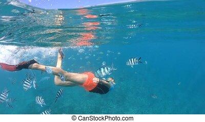 Snorkeling girl in Seychelles split view - Split view of a...