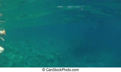 Snorkeling Molokini Crater 04