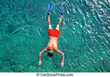 snorkeling, morze, człowiek