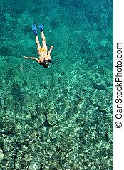 snorkeling, na, młody, rafy, koral, dama