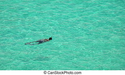 Snorkeling - Man snorkeling in crystal clear tropical bay.