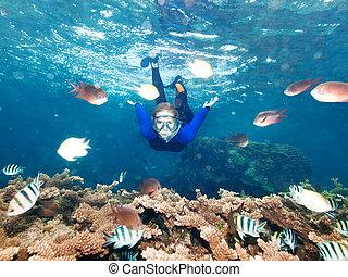 Snorkeling - Underwater shot of a snorkeling beautiful woman...