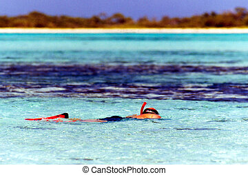 Snorkling in blue seas - Man snorkling in shalow blue waters