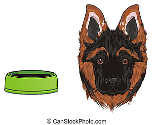 snout of german shepherd and empty bowl
