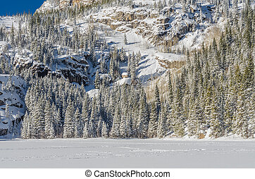 Snow Across Lake and Pine Trees in Colorado Wilderness
