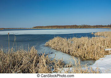 Snow and dry reeds on the shore of a frozen lake. Horizon and blue sky