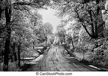 Snow and Mud - Photo of a snowy and muddy road running ...