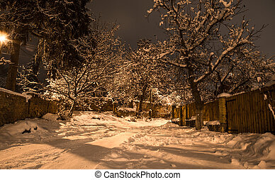 Snow beautiful winter night on the countryside. Street view with snow on trees.