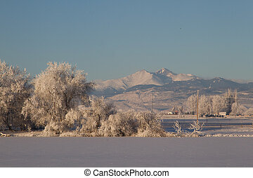 Snow Capped Longs Peak after a Winter Storm with frosted ice trees in the foreground