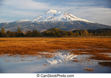 mount shasta - snow capped mount shasta with a blue sky
