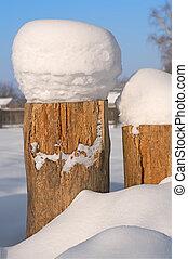 snow., ceppo albero, coperto