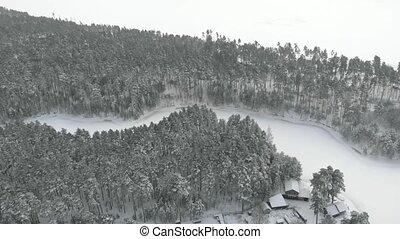 snow-covered, зима, лед, лес, сосна, unmanned, covered, антенна, река, посмотреть