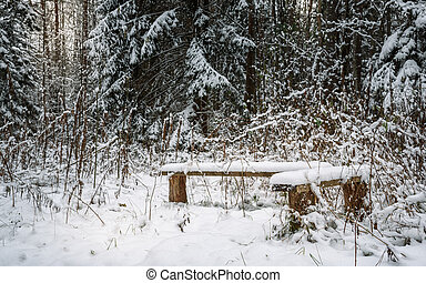 snow-covered benches in the woods on background of white firs and pines