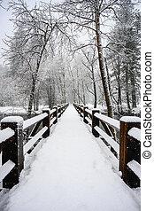 Snow Covered Bridge in Winter Storm