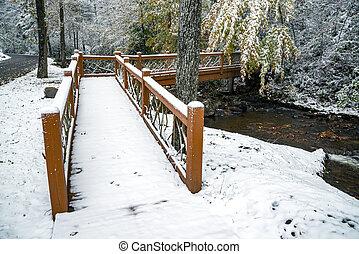 Snow Covered Bridge Over Mountain Creek