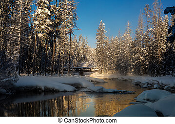 Snow covered forest in winter with a wood bridge