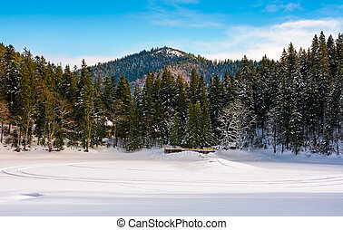 snow covered frozen Synevyr lake in winter. beautiful nature...
