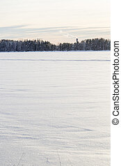 Snow Covered Lake with Trees