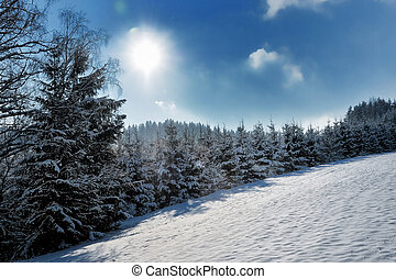 snow-covered landscape. the sun is shining. very deep blue...