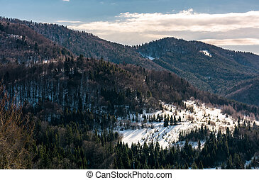 snow covered meadow among forest in mountains