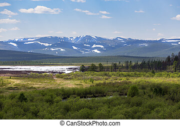 Zverev's ridge in South Yakutia, Russia, in early June